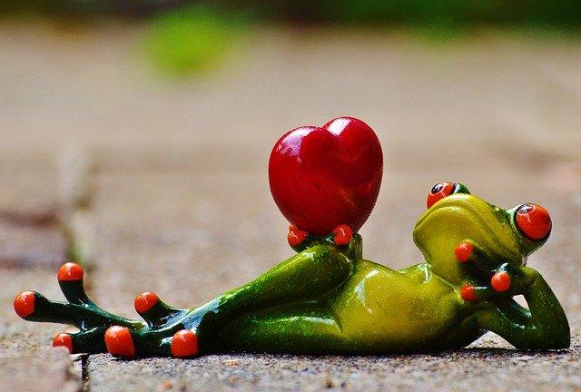 žába se srdcem
