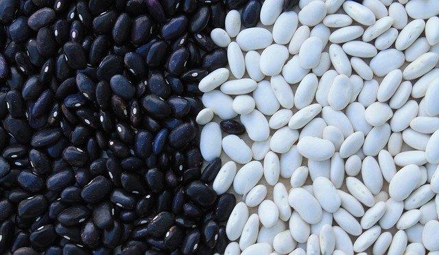 bílé a černé fazole